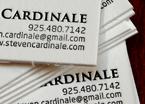 cardinale2.jpg